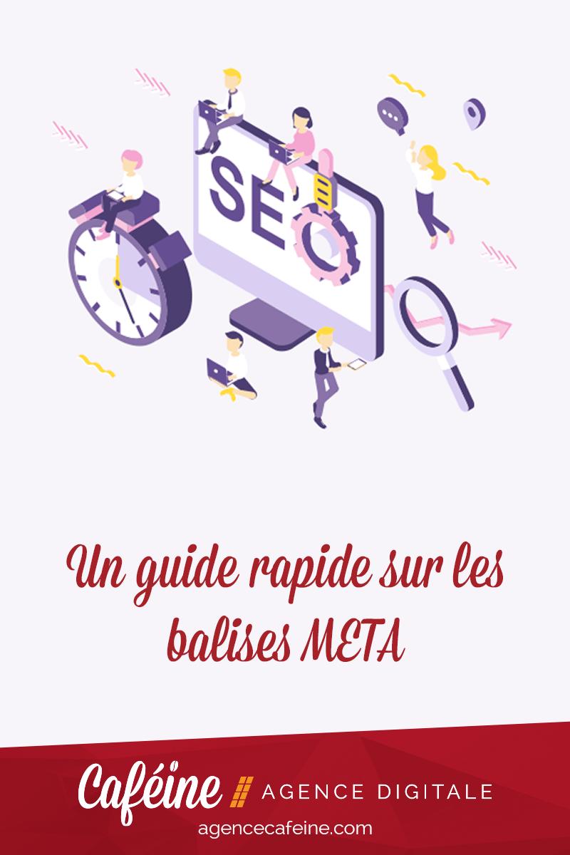 guide-balise-meta-pin